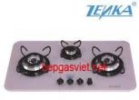 Bếp gas âm Zenka ZK-C753VDSC